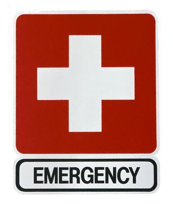 Central Equine Emergency